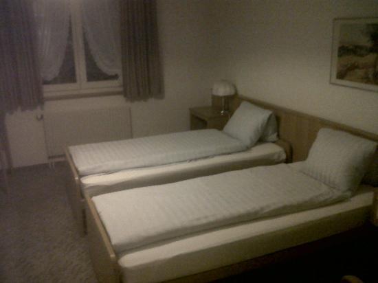 Hotel Chruz: Room view 1