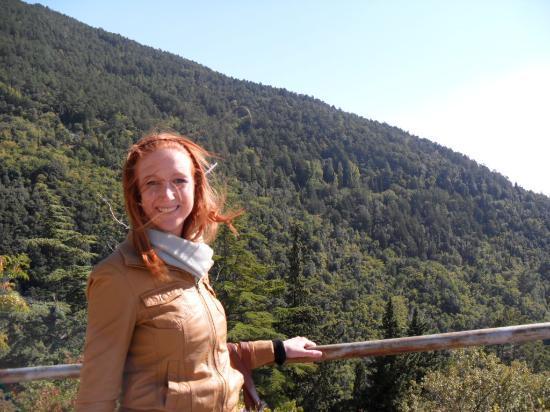 Eremo della Carceri: View of forest from monastery