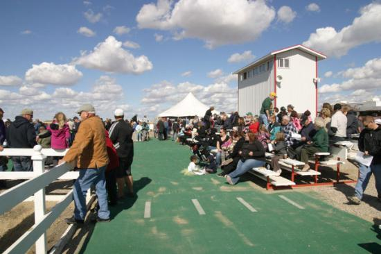 West Meadows Raceway : A view of the facilities
