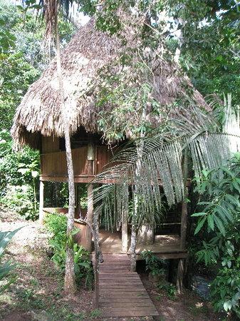 Martz Farm Treehouses and Cabanas Ltd.: The treehouse