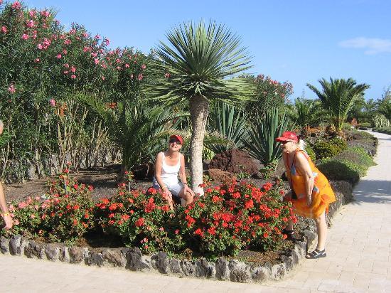 Hotel Elba Carlota : Fina blommor i Elba Carlotas trädgård