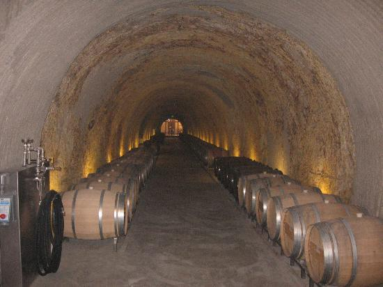 Kelly Fleming Wines: Wine Caves