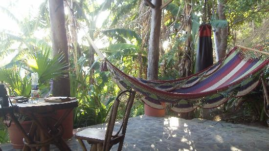Casa Pelon: Open Spaces with Great Hammocks