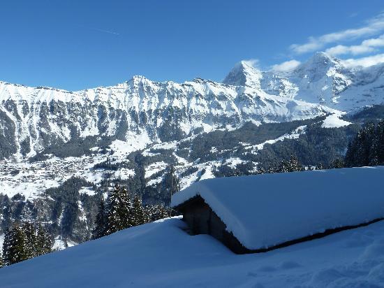 The Alpenhof: Murren