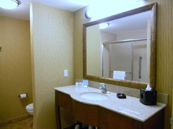 Hampton Inn Deming: Bathroom was shower only - a format we like a lot