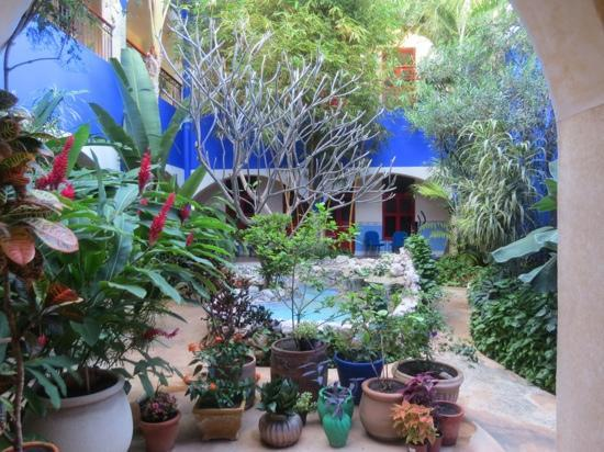 Hotel Medio Mundo: beautiful courtyard
