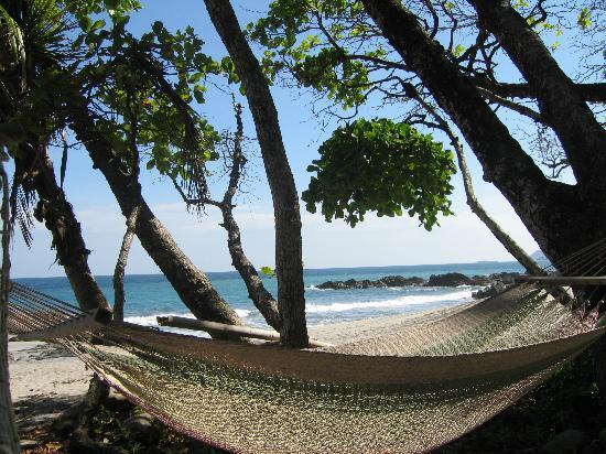 Hammocks on the beach for afternoon napping - Picture of ...
