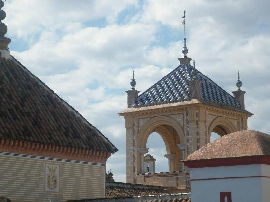 Pension Bienvenido : some view from the roof