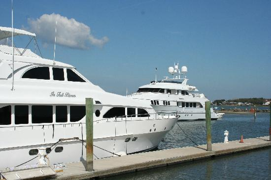 Kingfish Grill: View of yachts from our table