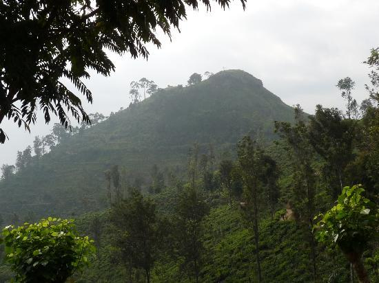 Ella, Sri Lanka : Little Adam's Peak