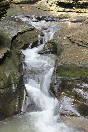 Watkins Glen State Park: Watkin Glen Falls