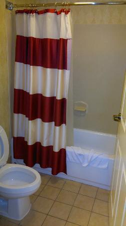 Residence Inn Houston by The Galleria: nice bathtub
