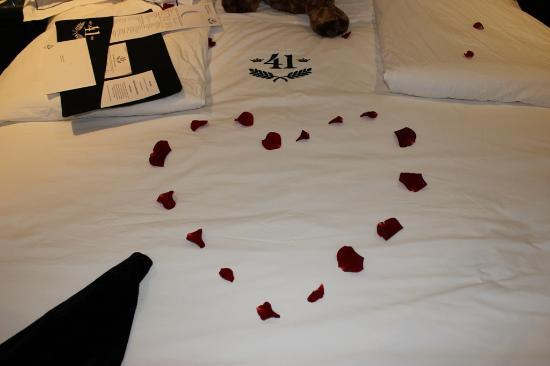 Hotel 41: Rose Petals