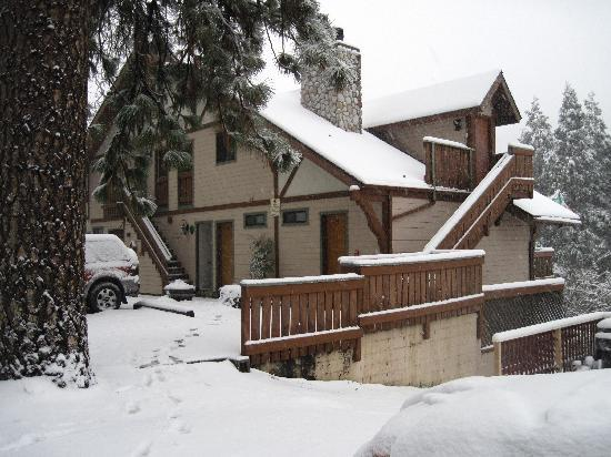 The North Shore Inn: Snowy days
