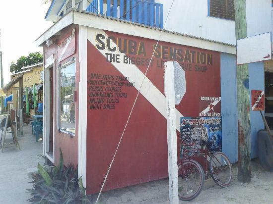 Caye Caulker, Belice: Shop on Front Street