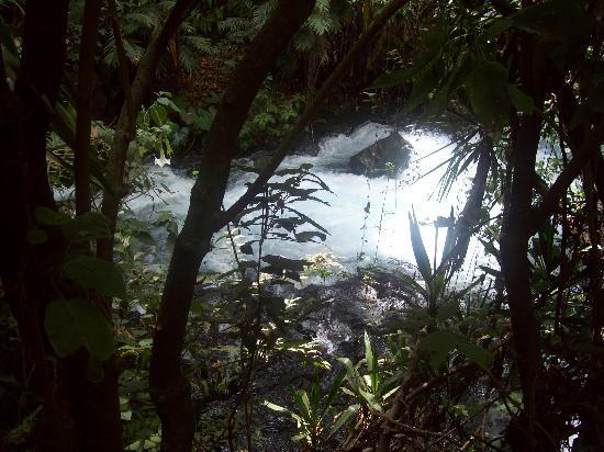 Uruapan, Mexico: Nacimiento de Agua
