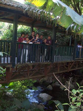 Uruapan, Mexico: Entrada trasera al parque.