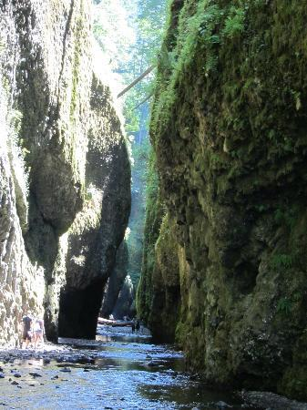 Cascade Locks, OR: Oneonta Gorge