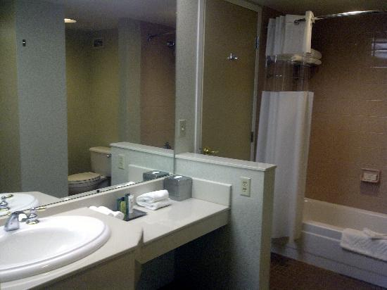Hilton Auburn Hills Suites: Bathroom
