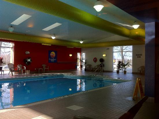 Comfort Inn : Pool area