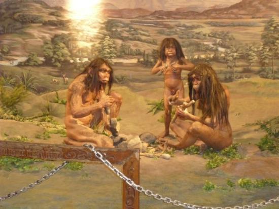 Rijksmuseum: Manusia Purba