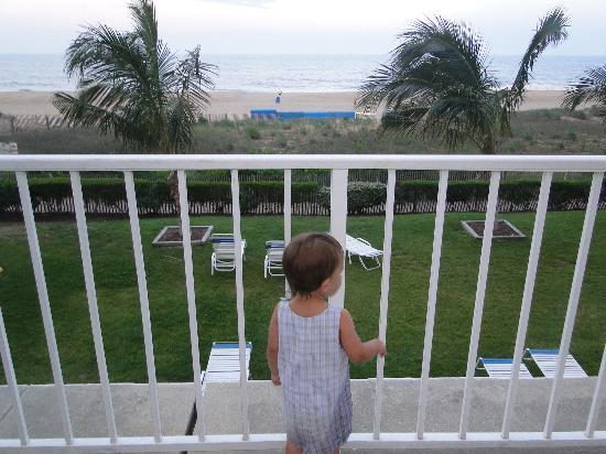 Princess Royale Resort: sammy looking out to the beach