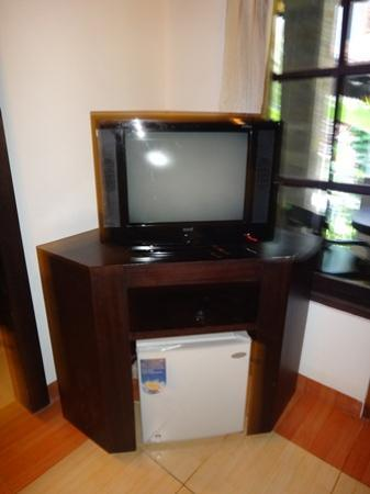 Puri Sading Hotel: TV & fridge