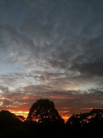 Avocado Grove B&B: Sunset as well!