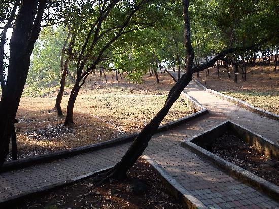 MTDC Beach Resort Harihareshwar: Internal Pathway
