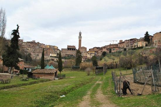 All'Orto de' Pecci: Vista dal giardino dei Pecci