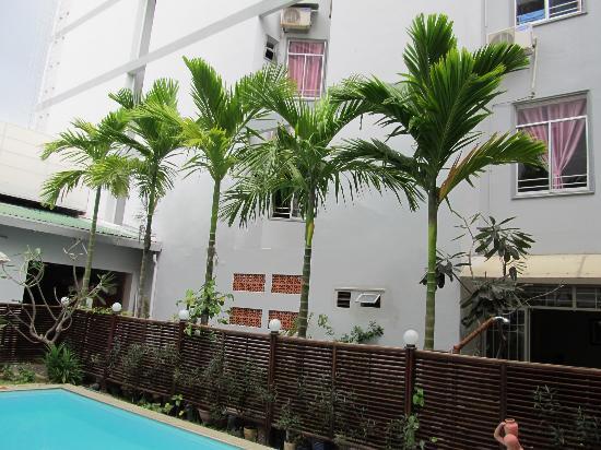 Violet Hotel: Вид из бассейна. Видна над пальмами окна в углублении в стене, одно из которых было нашим до пер