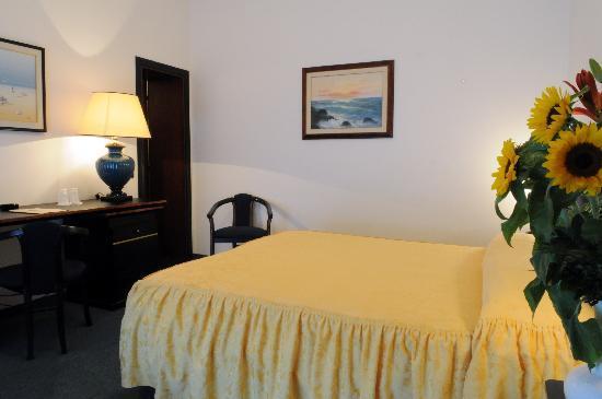 Hotel Stella : Camera calda ed accogliente