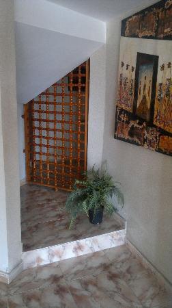 Hotel Sahel: 7