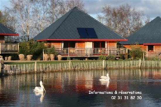 Cerza Safari Lodge : L'un de nos Lodges avec vue sur le plan d'eau des pélicans