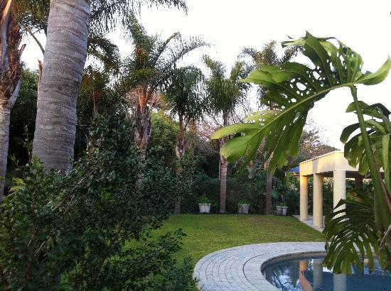 Constantia Palms : View from the room