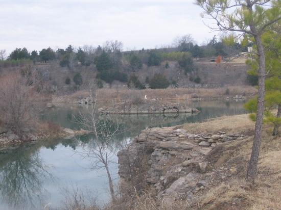 Meadowlake Ranch: the view