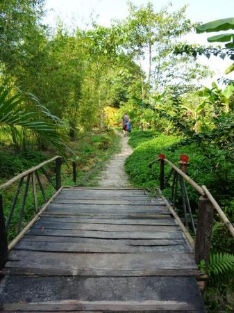 Freedomland Phu Quoc Resort: Walking inside grounds
