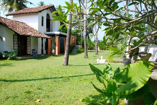 Casa Siena: the garden