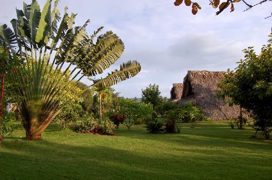 شاليه تروبيكال فيليدج بي آن بي: Chalet 2 & Chalet 3, view of the garden
