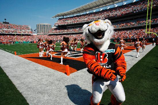 Cincinnati, Ohio: Cincinnati Bengals