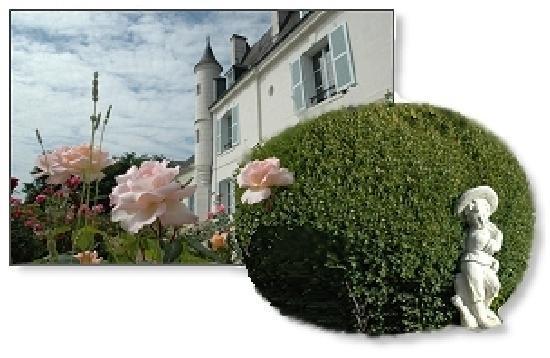 La Maison de l'Argentier du Roy: garden