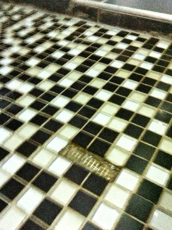 St Andrews Hotel & Spa: Shower floor...