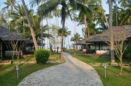 Nikki Beach Resort Koh Samui: View of bungalows and path to beach