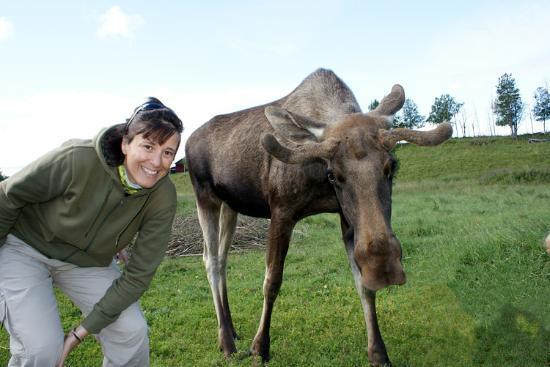 Moose Garden: incontro con i grandi