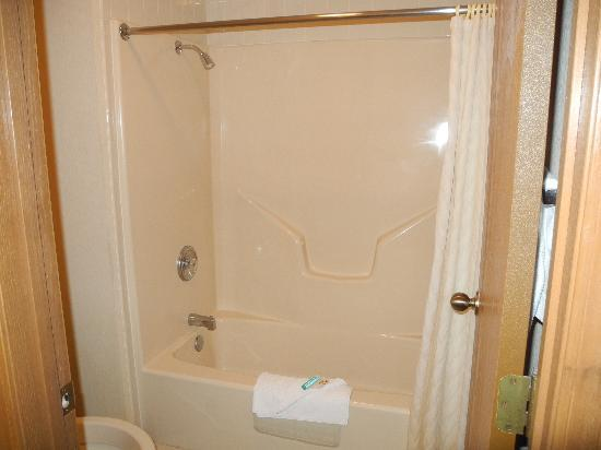The Dutton Inn: bathroom