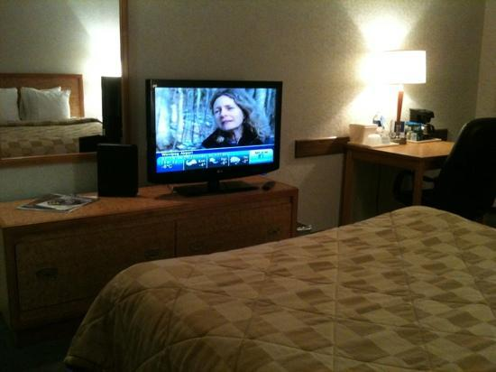 Comfort Inn Winnipeg Airport: tv