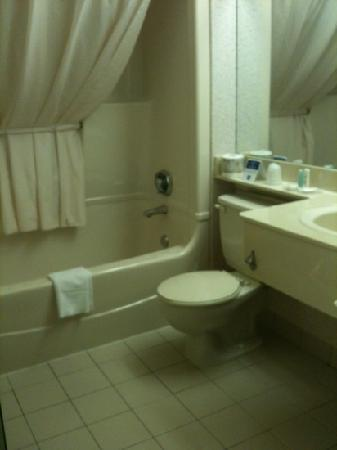 Comfort Inn Winnipeg Airport: bathroom