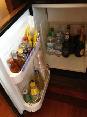 Pierre Hotel Florence: il frigo bar