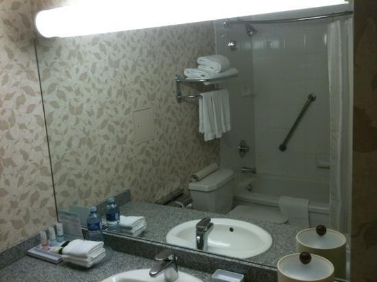 Comfort Inn Airport: bathroom