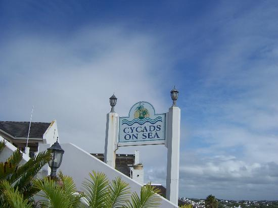 Cycads on Sea Guesthouse: Cycads on Sea Name
